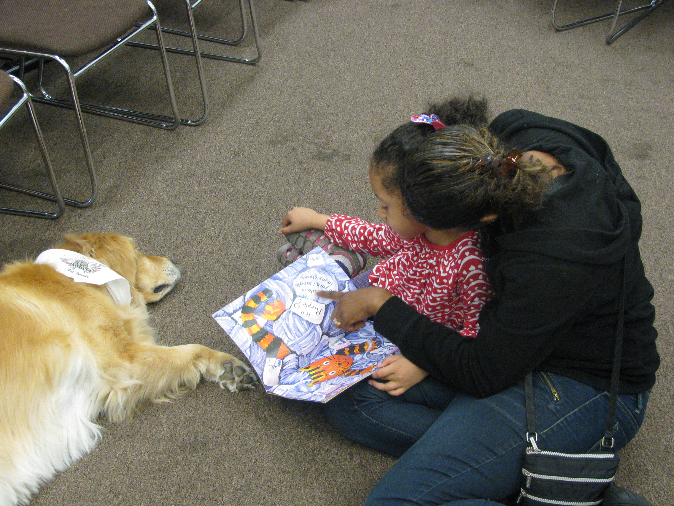 Everyone had a lot of fun reading to the Fur Angels at our library!
